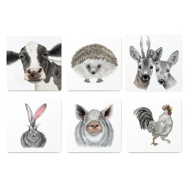 coaster animals