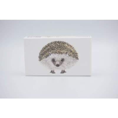 Matches hedgehog
